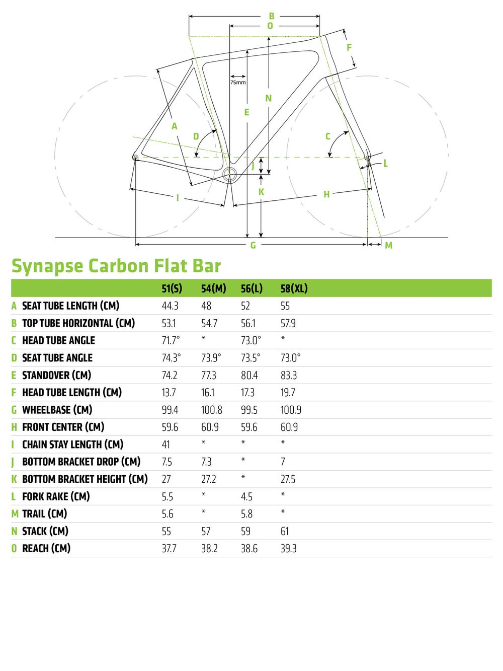 Synapse Carbon Disc Ultegra Flat Bar -